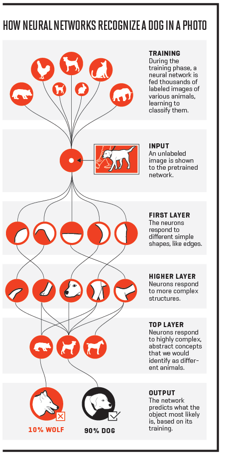 lrn-10-01-16-neural-networks-e1474990995824